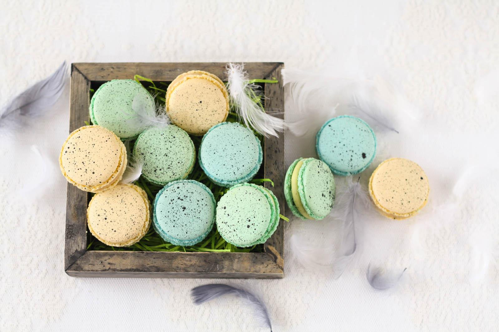 Cookie Jar - Implinitori de vise dulcie 22